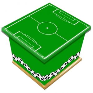 Football Pitch Ashes Casket