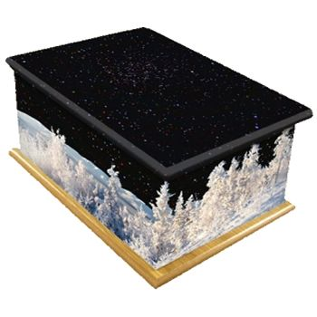 Winter Night Ashes Casket