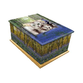 Bluebell Wood Pet Casket