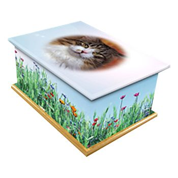 Splendid Beauty Pet Casket