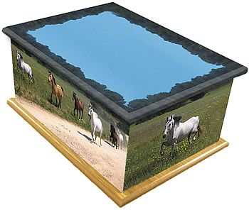 Wild Horses Ashes Casket