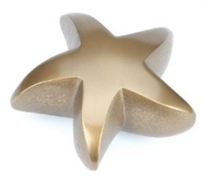 Brass Star Keepsake