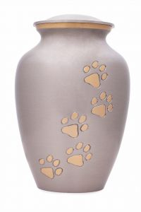 Paw Footprints